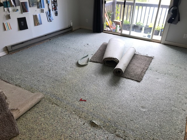 The original underlayment is revealed, under neatly-cut rolled up carpet