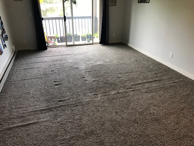 The carpet of a 14ft x 18ft living room