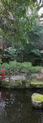 Hondo Suwa Shrine