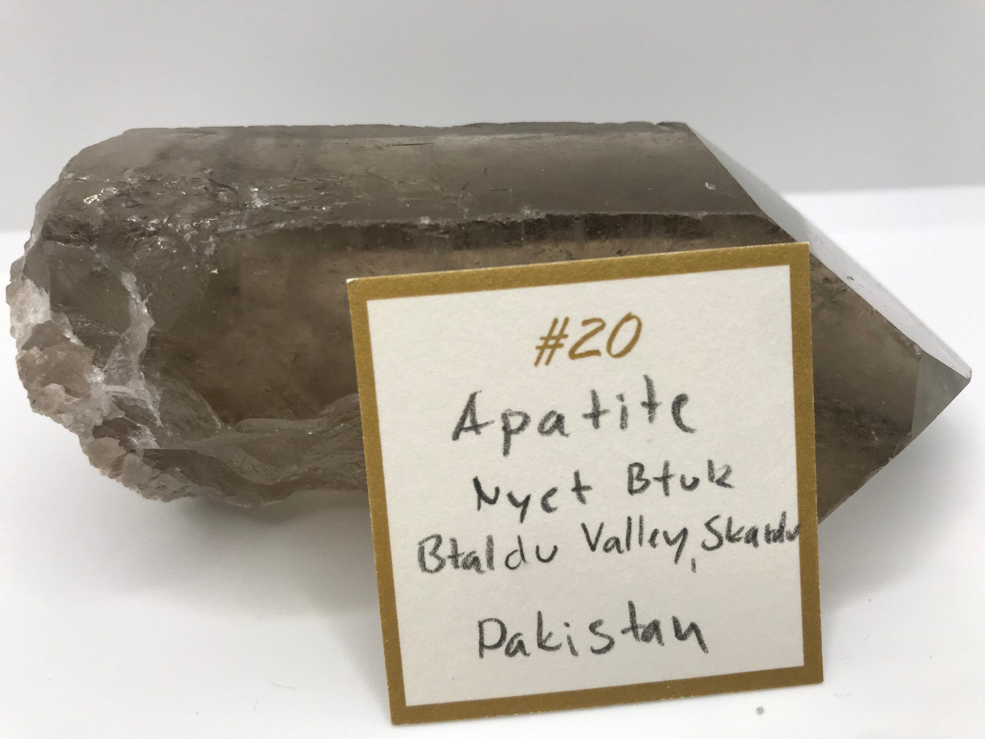 Apatite Crystal Ring (origin)