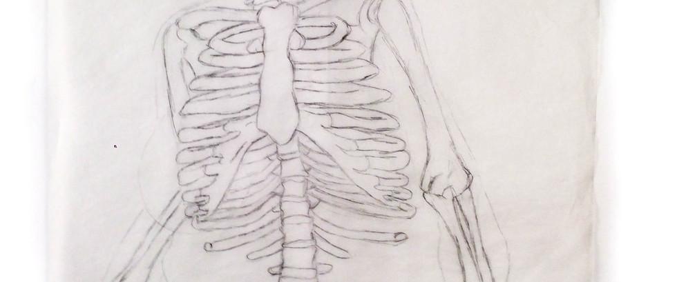 """Anatomy Study of """"Branded"""" by Jenny Saville; skeleton layer"""