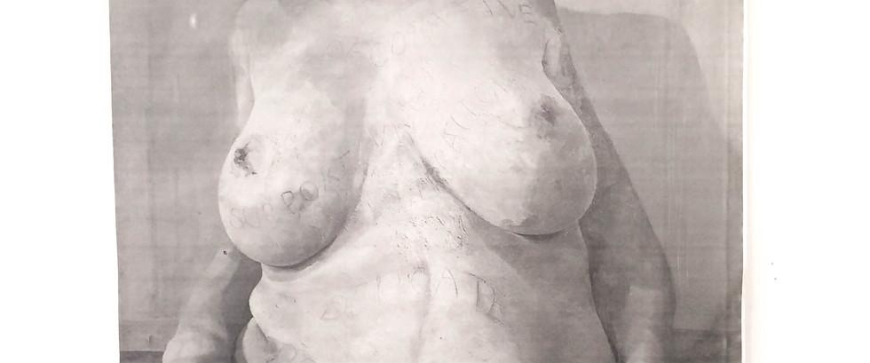 """Anatomy Study of """"Branded"""" by Jenny Saville"""