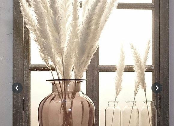 Naturlig tørkede hvite pampas blomster 7 stk