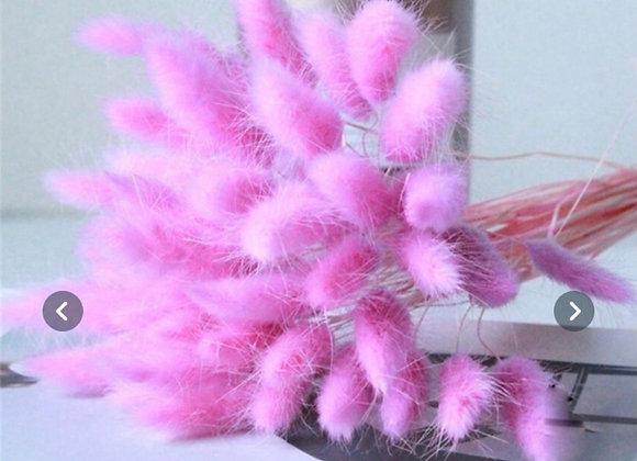 Naturlig tøket blomst farget lilla- 30 stk