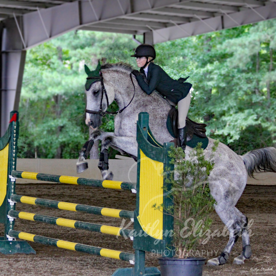 ELITE SHOW JUMPING