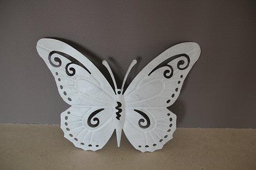 Papillon plein