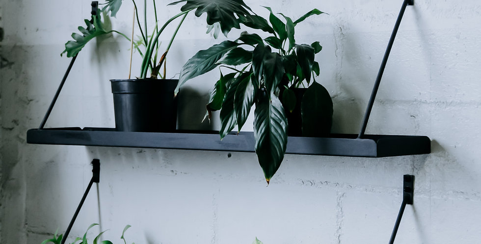 Planter Tray- Wall Mounted