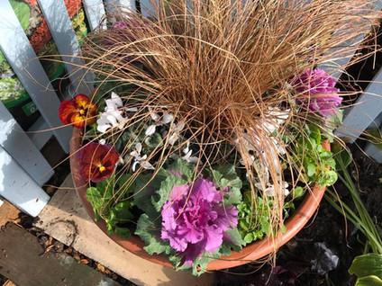 Autumn/winter pot