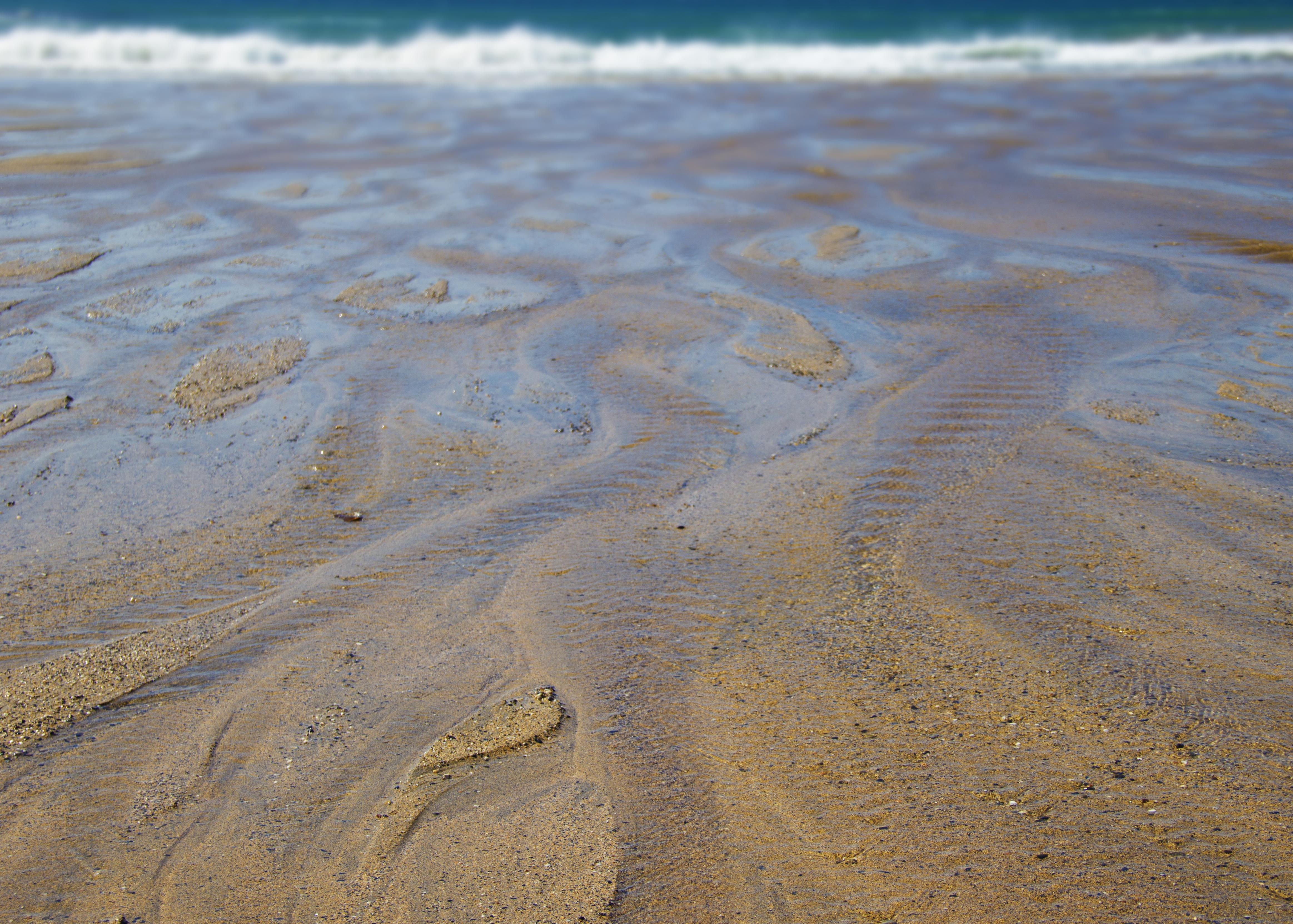 Snake Sand IMG_3896