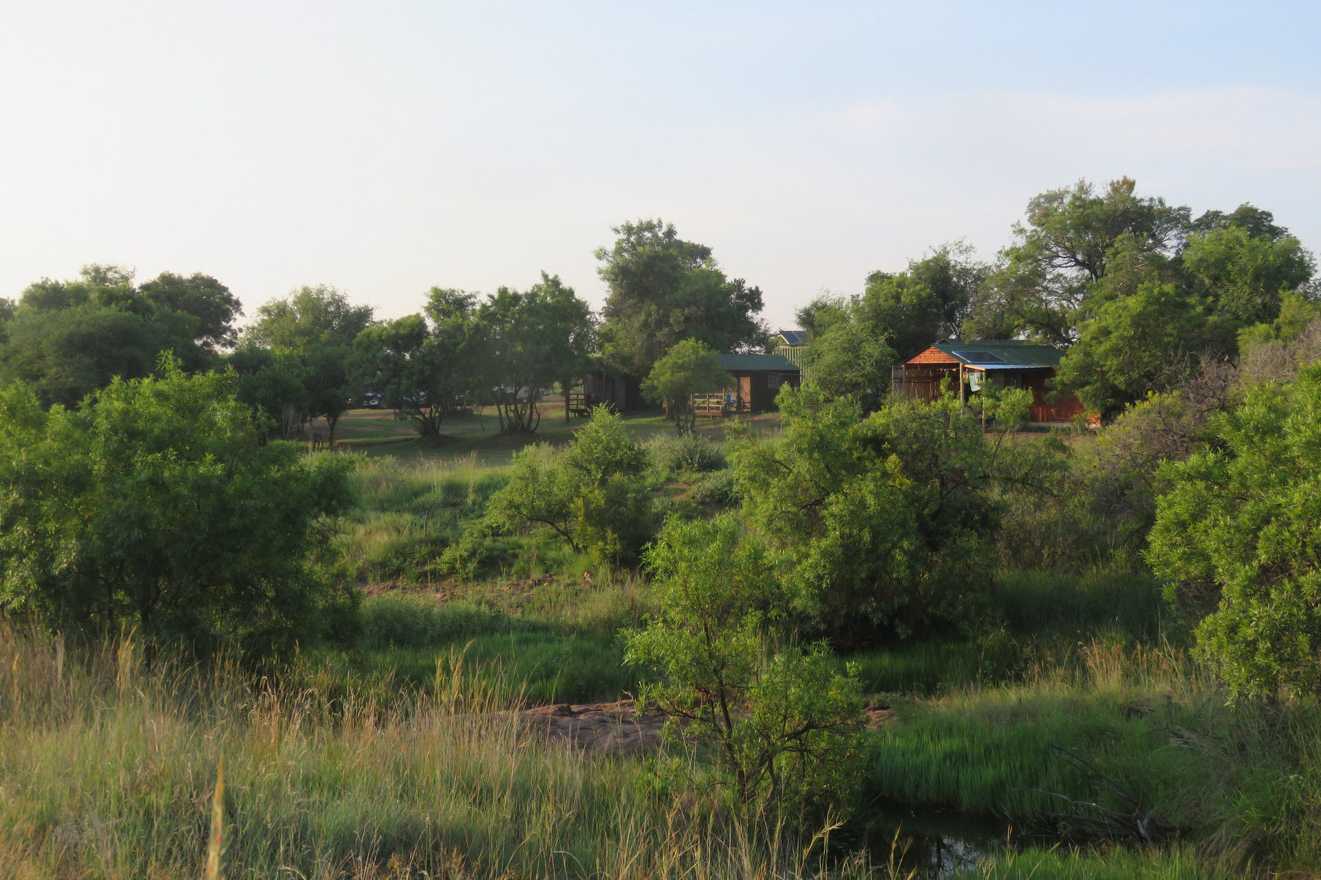 Camp From A Distance
