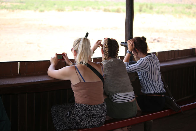 Wildlife Conservationists Watching Birds