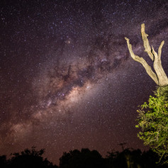 Milkyway As Seen From Camp