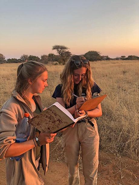 Wildlife Volunteers Studying The African Veld