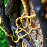 Reportage réalisé dans le cadre des Rendez-vous aux Jardins - Pontoise 2021 - Création Odile Houssin alias MO