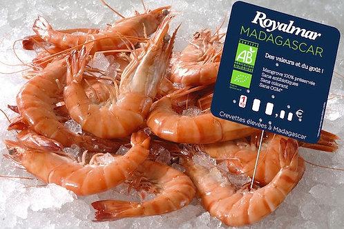 Crevette Madagascar Label Rouge Bio Cuite Fraiche 40/60szt/kg 2kg