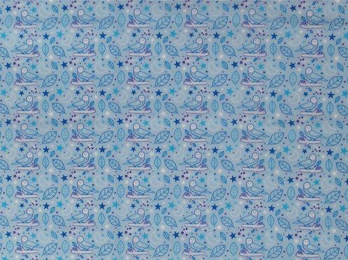 Coleção Coruja Azul Claro