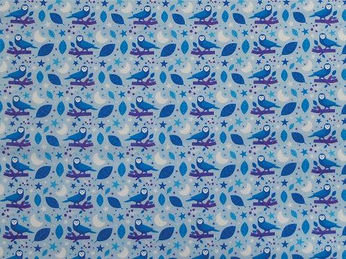 Coleção Coruja Azul
