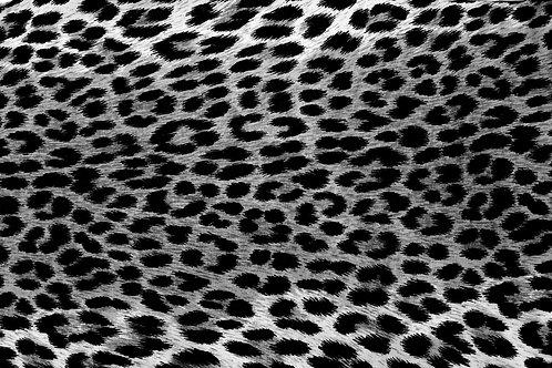 Animal Print TD 4000 C