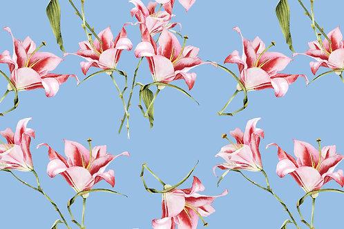 Tulipa Fundo Azul 335