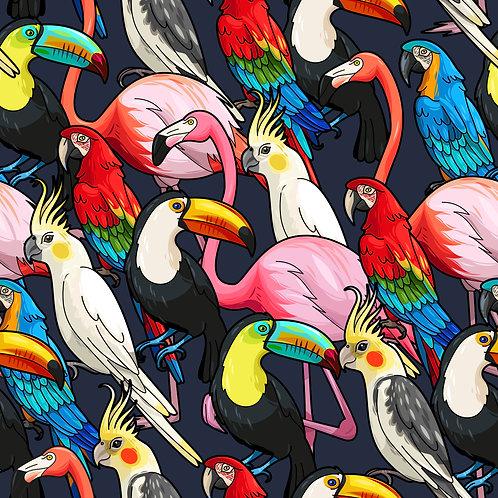 Pássaros Tropical Brasileiros