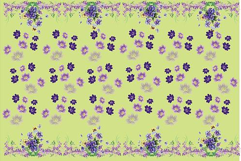 Barrados  Flores 2