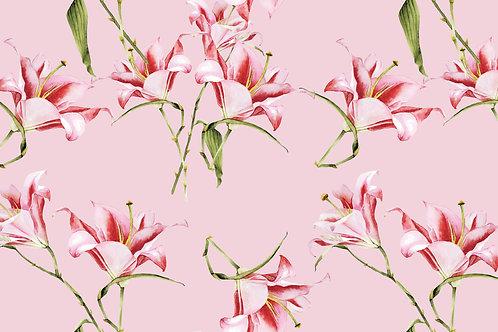 Tulipa Fundo Rosa 334