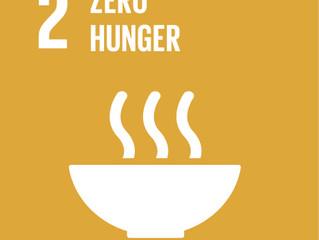 SDGs#2 - Erradicar a Fome
