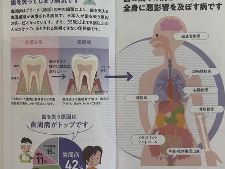歯のクリーニング、定期検診