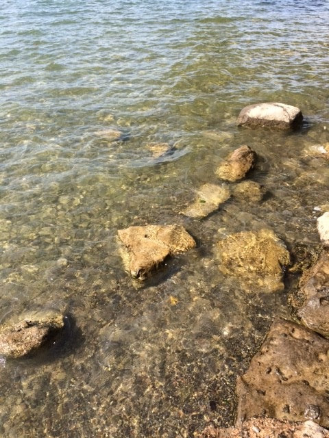 Clear waters observed today.