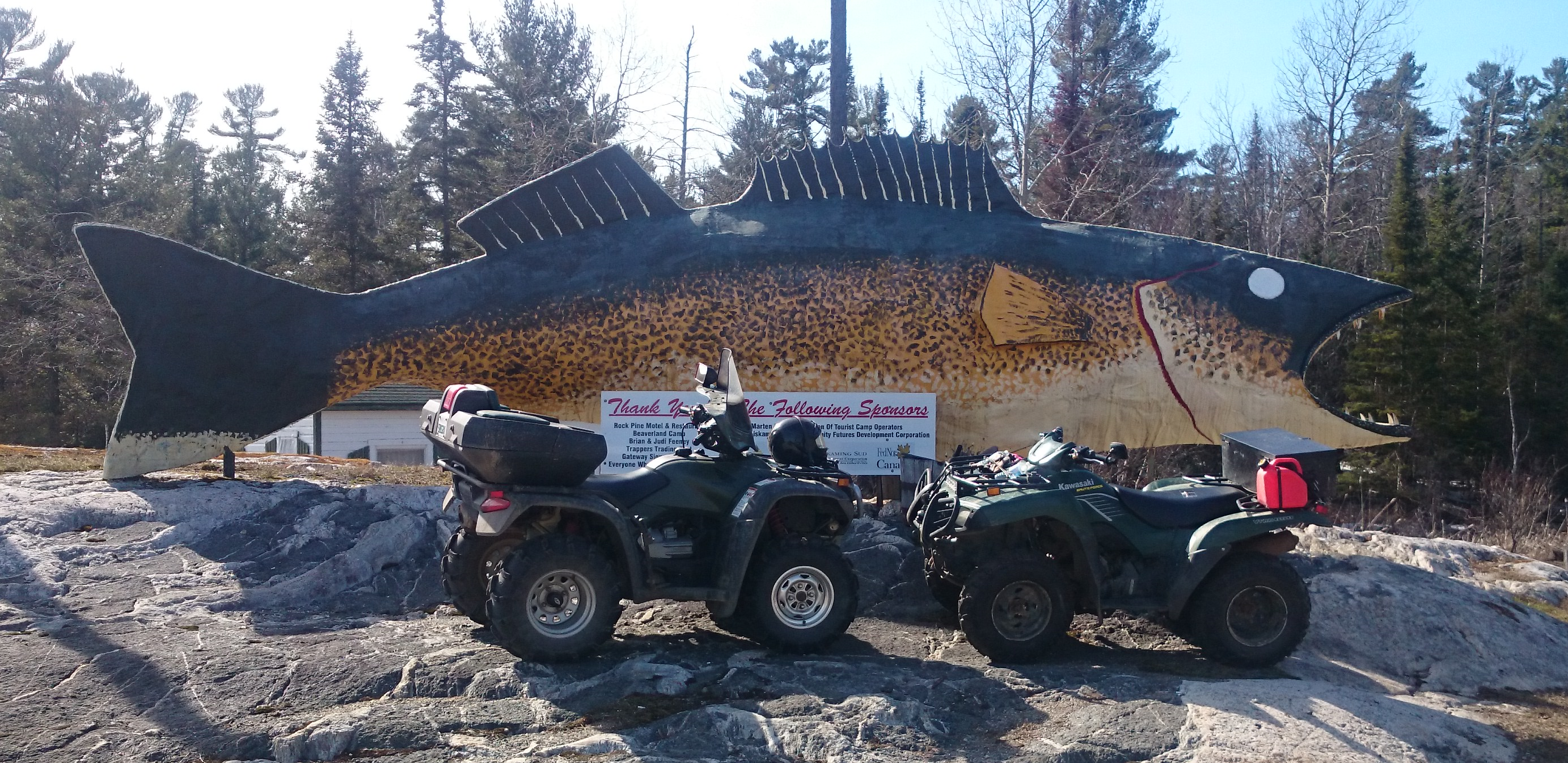 Fish with ATVs