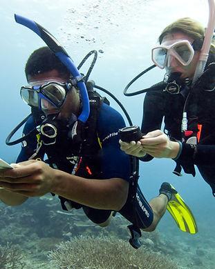 Navigation divers