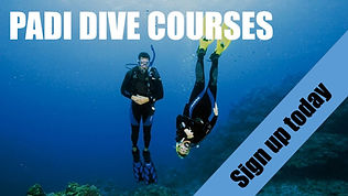 PADI dive courses MK Scuba School