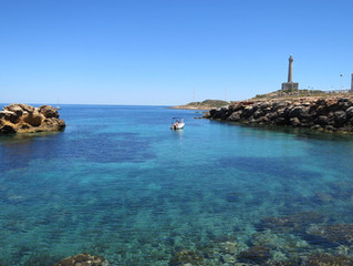 Diving in Murcia and the Costa Calida, its brilliant but don't just take our word for it!