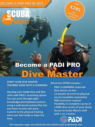 Dive Master e-learning.jpg