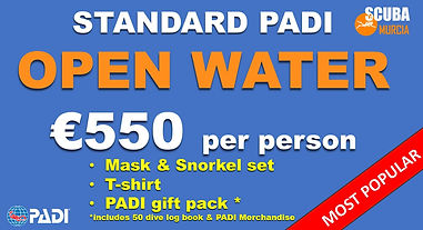 Open Water Standard.JPG