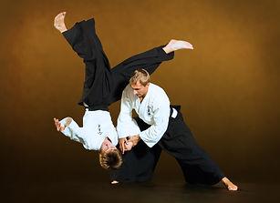 aikido-ntgfa-ivashkin.jpg