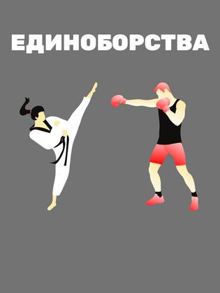 Бокс, борьба и другие единоборства