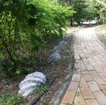 shells_walkway.jpg