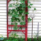 Old Door Climbing Frame