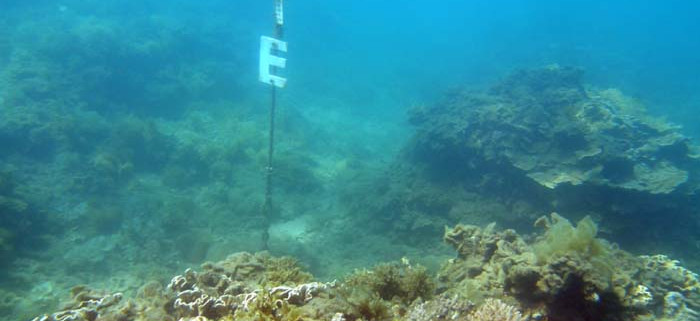 Sub surface float (SSF) E