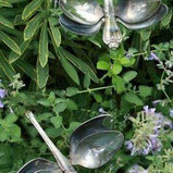 Dragonfly Spoons