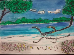 Ysabel Island, Solomons