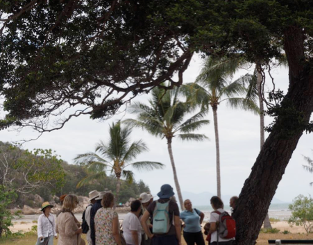 Significant Trees Workshop Geoffrey Bay: Mimusops elengi
