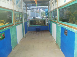 marine display hallway