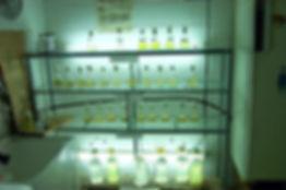 microalgae%20stocks_edited.jpg