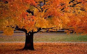 Blessings for October