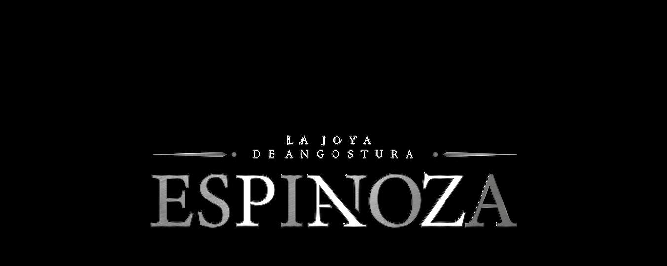 PORTADA 1-3 PAGINA WEB ESPINOZA PAZ (1).