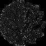 oak-lotus_logo_vs2 (1).png