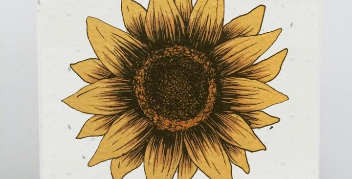 PLANTABLE GIFT CARD -- Sunflower