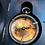 Thumbnail: Royal Compass